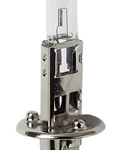 12V Lampada alogena – H1 – 55W – P14,5s – 2 pz  – D/Blister